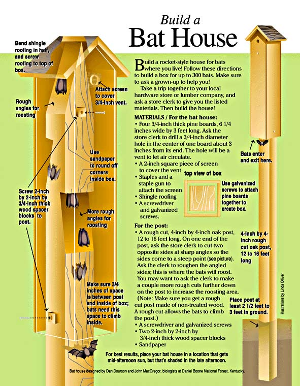 Samuel wilson 39 s bat houses veggieboards for Bat house plans
